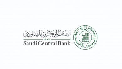 صورة بالأسماء.. 5 قطاعات تخضع لرقابة البنك المركزي السعودي
